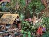 ayahuasca-visions_021.jpg